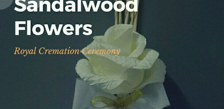 sandalwood flowers