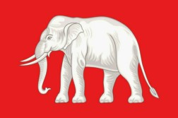 White elephant on red